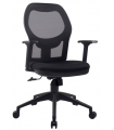 Mid Back Mesh Chair with Adjustable Armrest